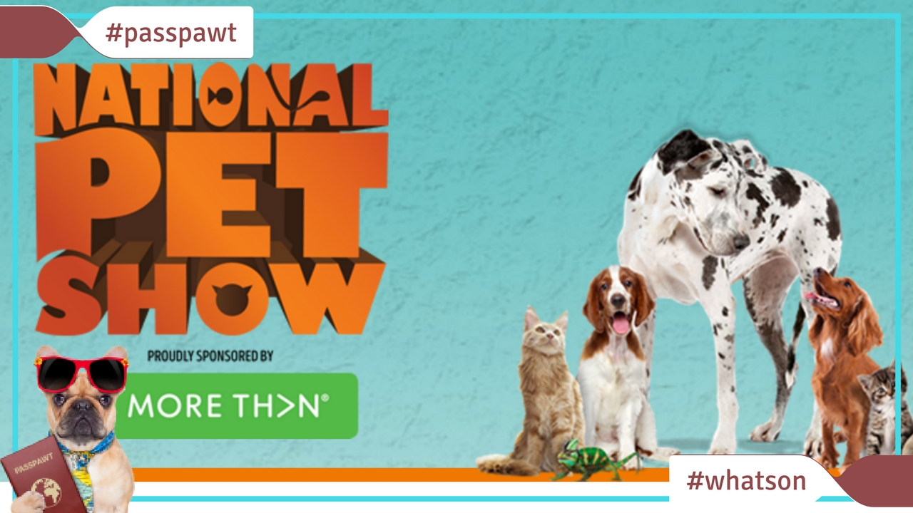 What's On In Dogland – News – The London Petshow