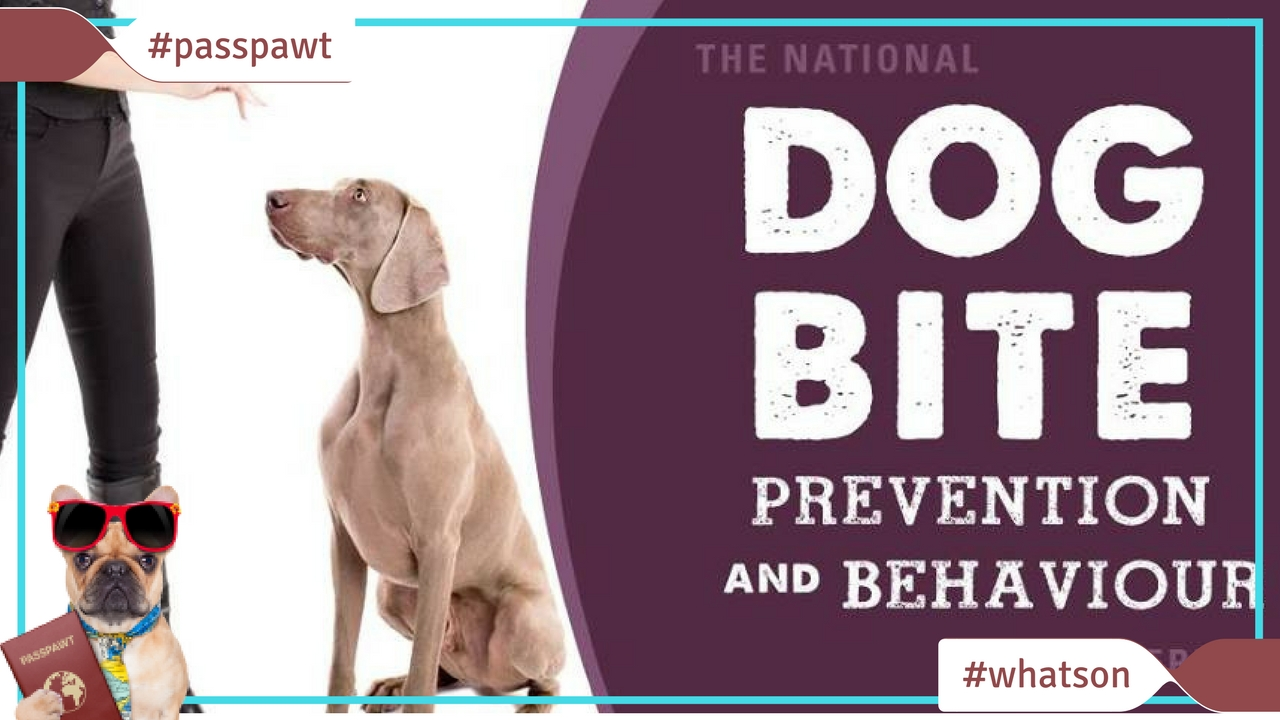 What's On In Dogland – News – 2017 National Dog Bite Prevention & Behaviour Conference